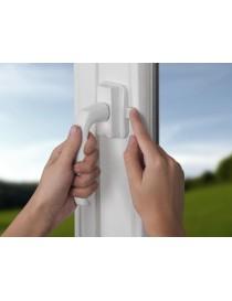 REER Protection fenêtre &...